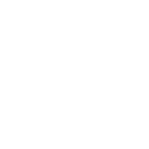 logo_300_GIZ2