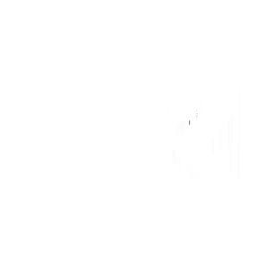 logo_300_TK