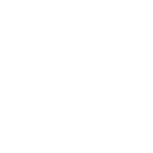 logo_300_verdi
